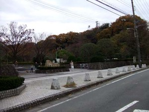 2009_12050010