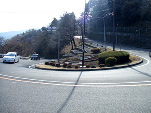 2010_01170008