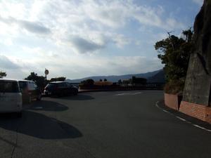 2010_01310007
