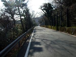 2010_01310012