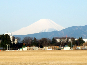 2010_03110001
