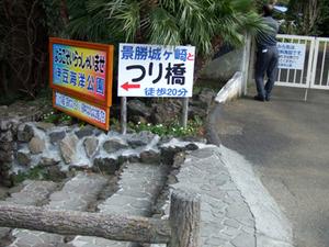 2010_03130012