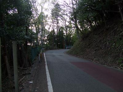 2010_04080004