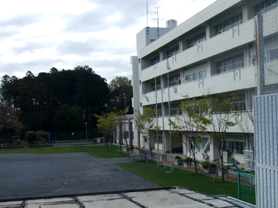 2010_04170001