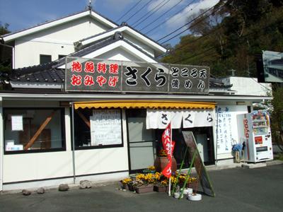 2010_04180014