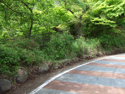 2010_05170008
