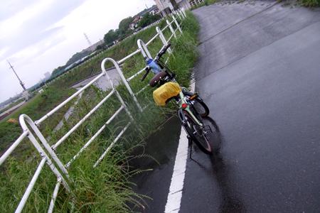 2010_07290001