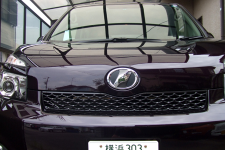 2010_07310001