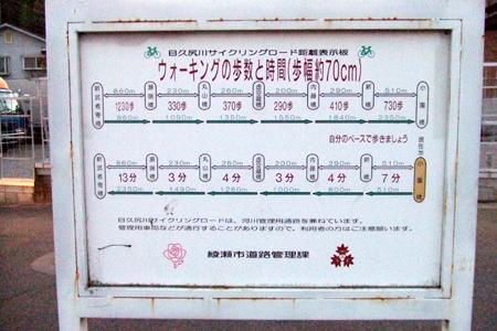 2010_11030003